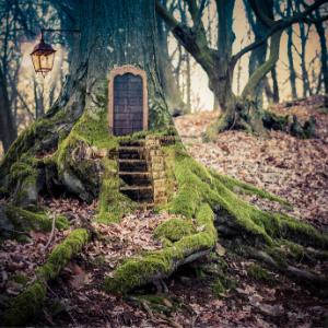 Escape Rooms Escape, Down the Rabbit Hole,